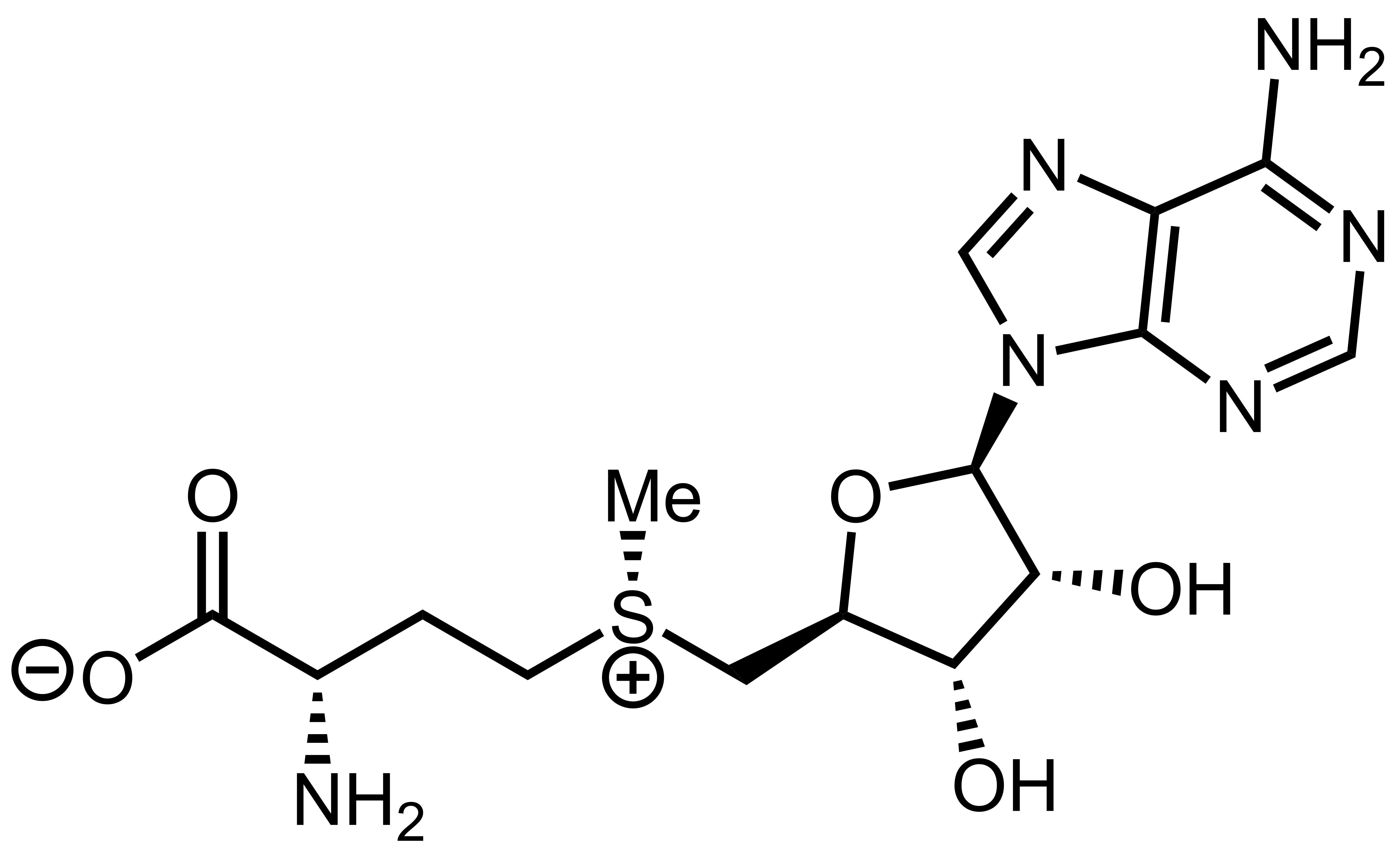 L-Methionine 500mg Now