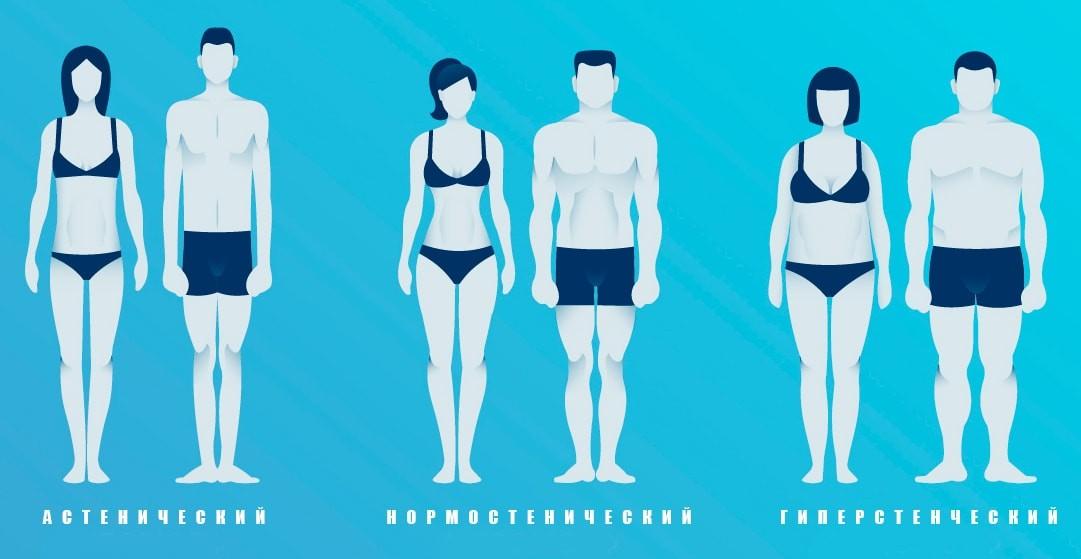 test karcsú modellező