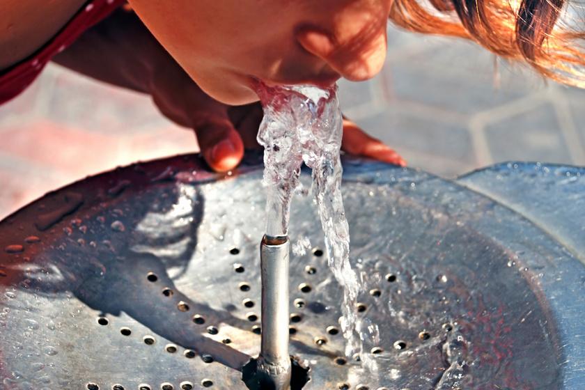 Ez történt, amikor rászoktam a napi 4 liter vízre | nlc