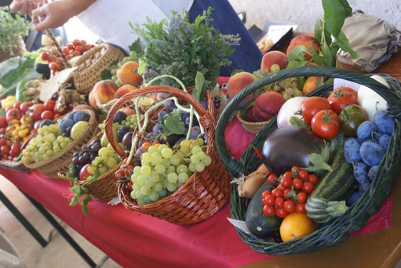 Flexibilis diéta – avagy egy életen át fenntartható egészséges étrend
