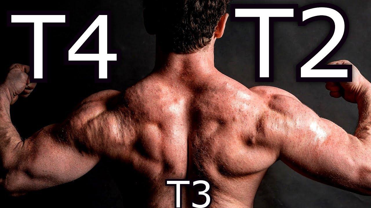 t3 vagy t4 a fogyáshoz fogyás kernersville