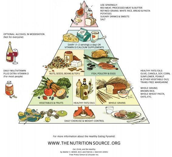 zsir dieta testgyengeség és fogyás