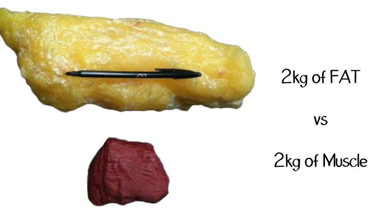 Hogyan veszíthetünk zsírt a hasról és az oldalról