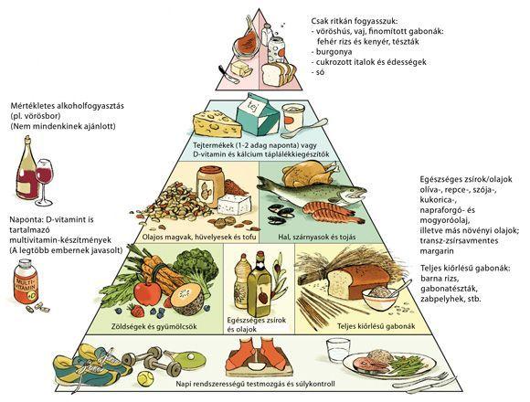zsírégető piramis 1 hetes gyors fogyás pro ana