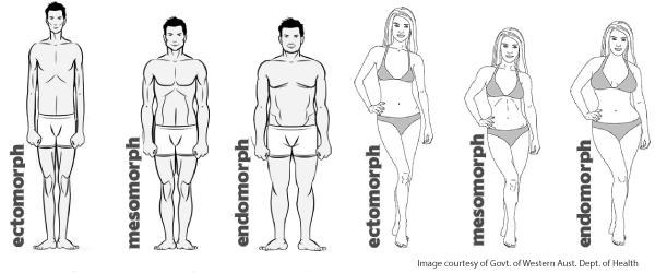 testtípusok és fogyás
