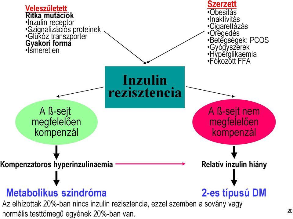 Metabolizmus - mi ez? Mi az anyagcsere-rendellenesség? - Szövődmények July